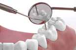Endodontie , Parodontologie und Schienenbehandlung
